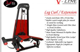 Leg Curl/Extension